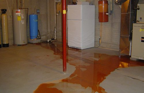 basement waterproofing mold remediation foundation repairs
