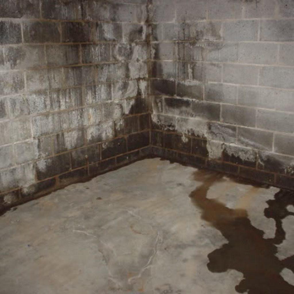Damp Basement Finding Leaks And Water Sources: Basement Waterproofing Specialists